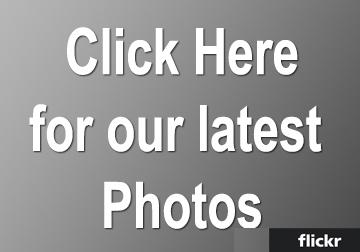 latest-photos